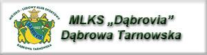 MLKS Dabrovia Kluby sportowe