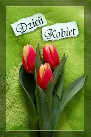 8 marca Dzień Kobiet Życzenia od samorządowców na Dzień Kobiet