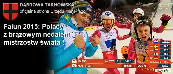 Header-FIS-Falun-2015