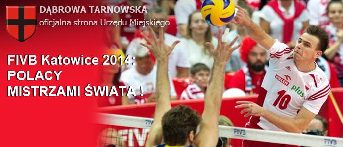 Header-FIVB-2014