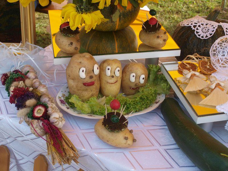 ziemniak3 Zaproszenie do Smęgorzowa na Święto Ziemniaka