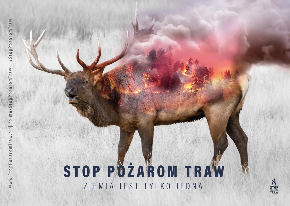 plakaty 1 02 2019 Wypalanie traw jest karalne !!!