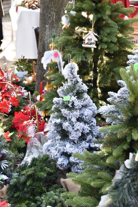 DSC 0326 Relacja z V Kiermaszu Bożonarodzeniowego w Dąbrowie Tarnowskiej