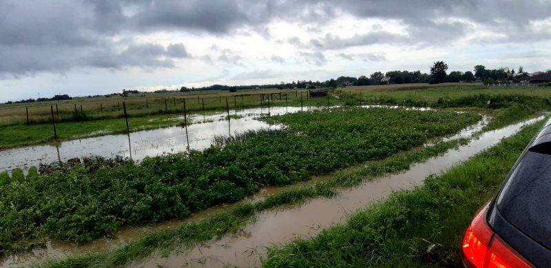 IMG 20200629 WA0041 Pogotowie przeciwpowodziowe na terenie gminy Dąbrowa Tarnowska