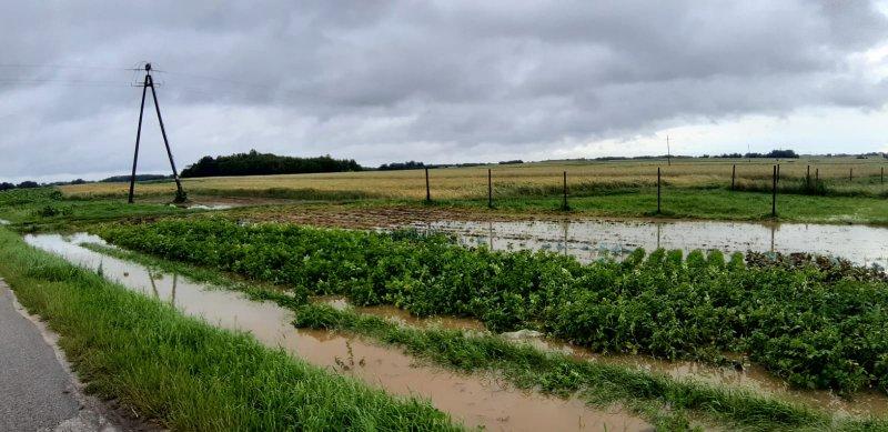 IMG 20200629 WA0059 Pogotowie przeciwpowodziowe na terenie gminy Dąbrowa Tarnowska