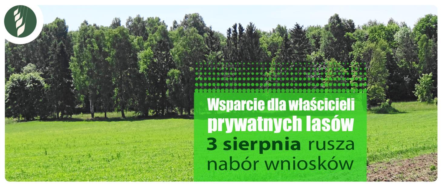 1460x616 Wsparcie dla właścicieli lasów prywatnych