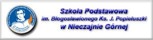 PSP NG Gminne jednostki oświatowe